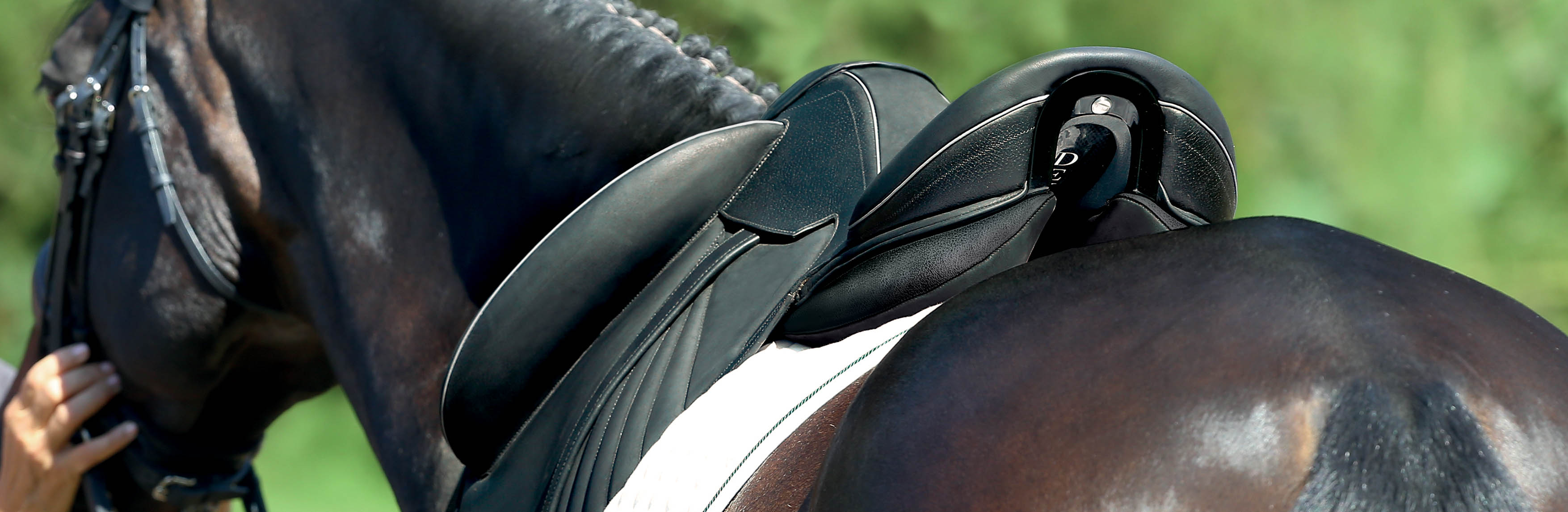 Makila Harmonie dressage saddle
